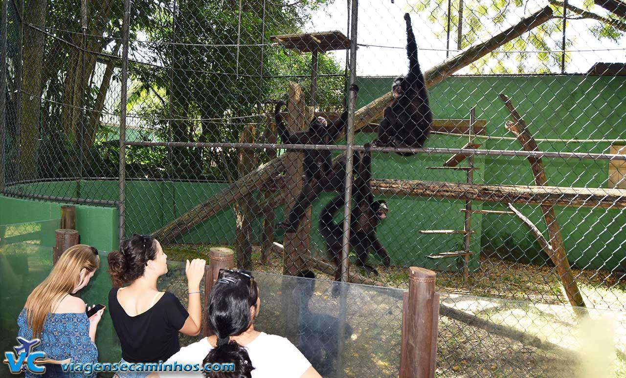 Zoo de Balneário Camboriú