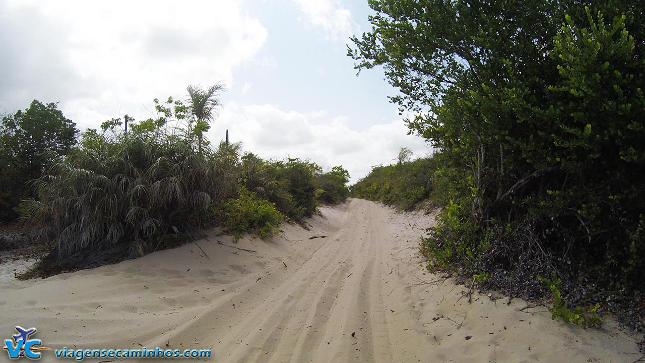 Trilhas de areia da região de Barreirinhas, no Maranhão