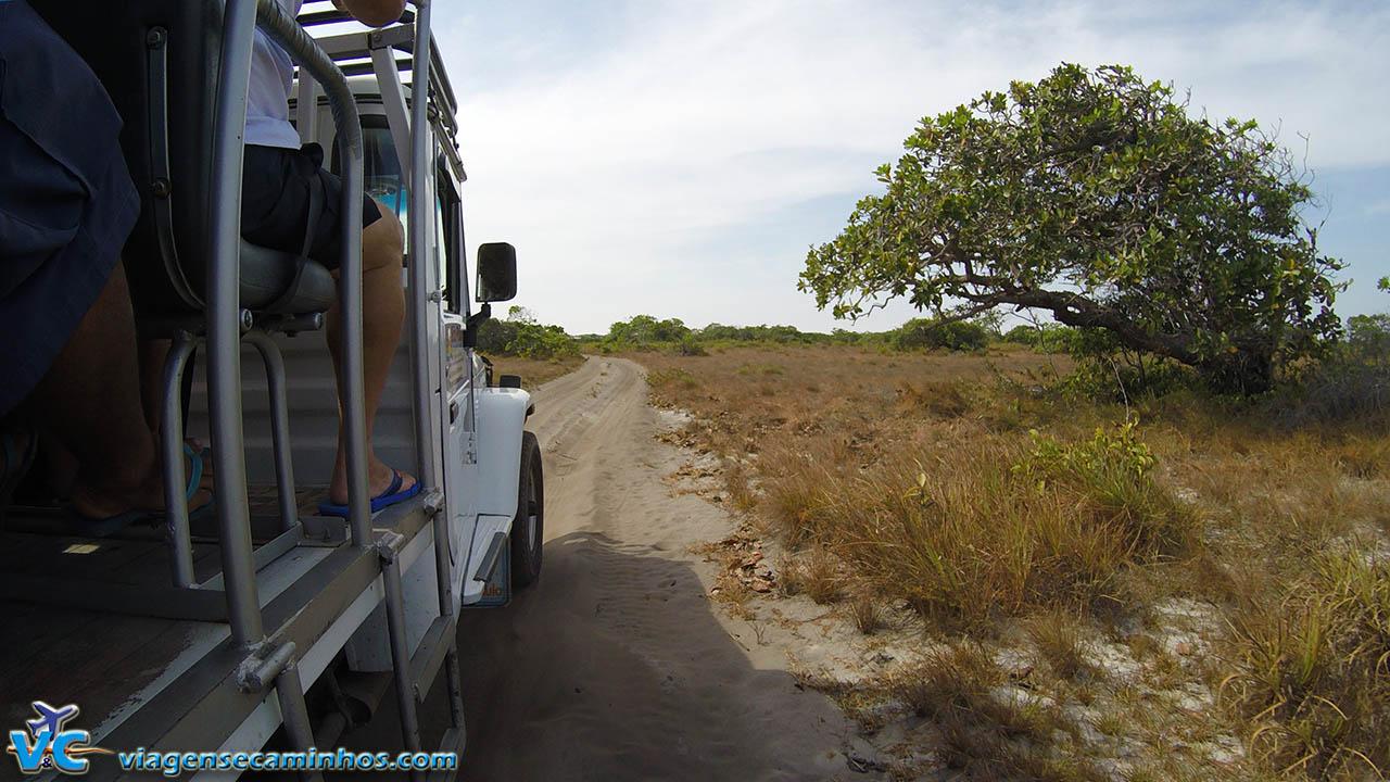 Transporte de Toyota 4x4 pela trilhas de areia da região