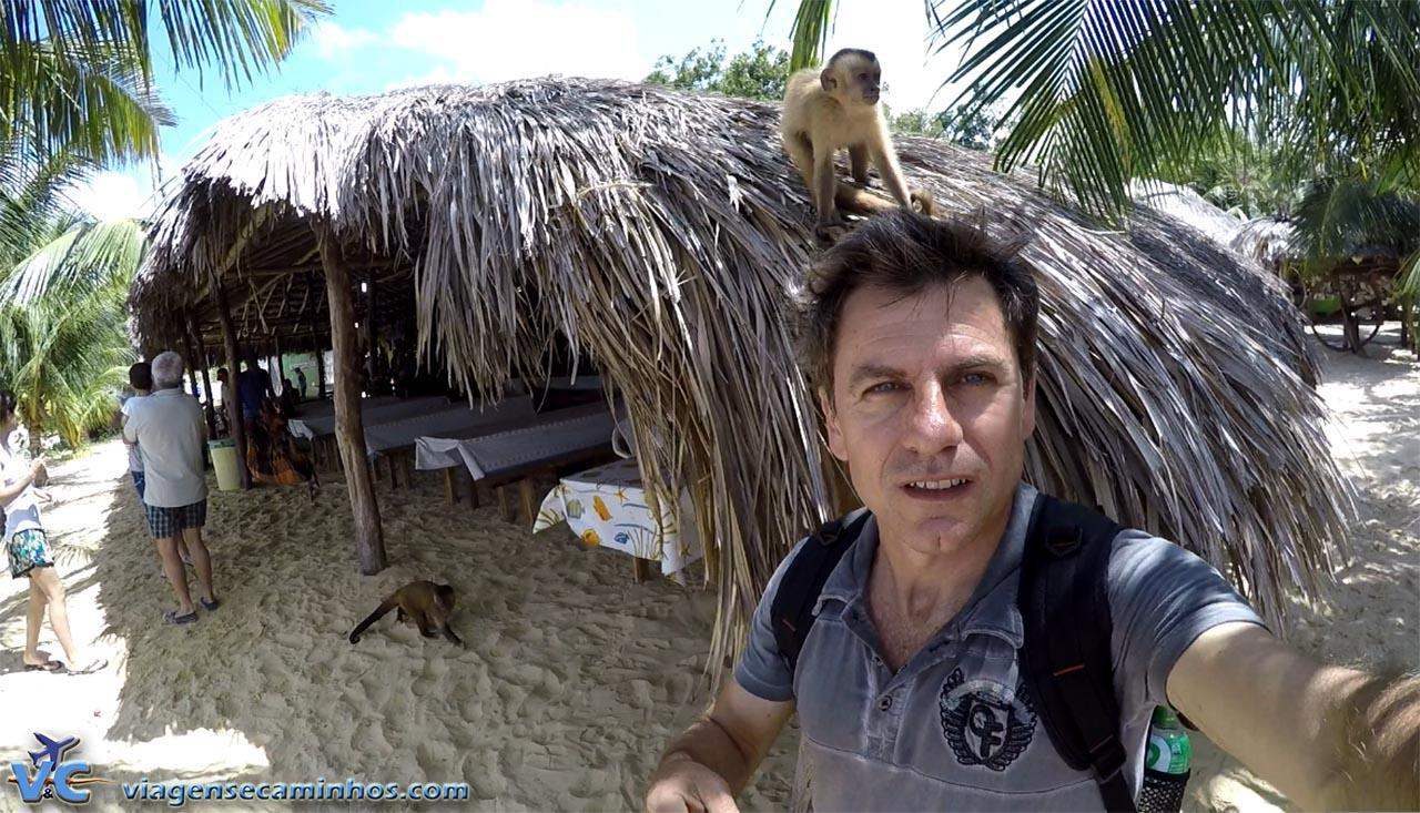 Tenda dos macacos, em Vassouras