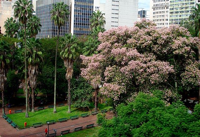 Praça da Alfândega - Porto Alegre